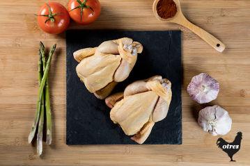 pollito-tomatero-otres-comprar-online-salceda